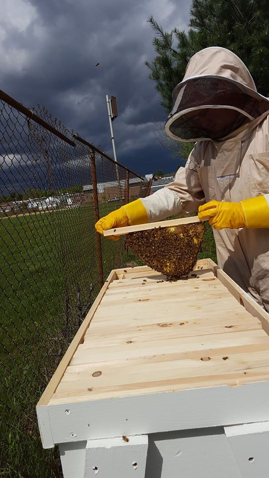 School-wide Collaboration Helps Bring Beekeeping Program to Southeastern